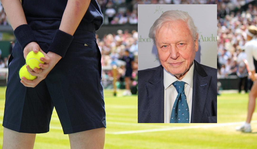 David Attenborough forandret tennisballens farge
